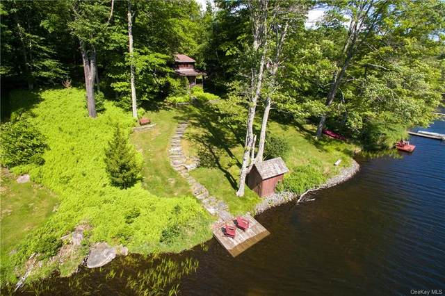 100 Lake Muskoday Road, Fremont, NY 12736 (MLS #H6048933) :: RE/MAX Edge