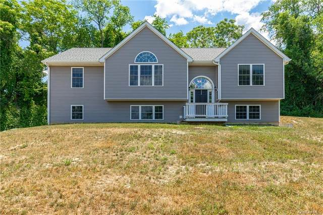 678 Plass Road, Pleasant Valley, NY 12569 (MLS #H6049036) :: William Raveis Legends Realty Group