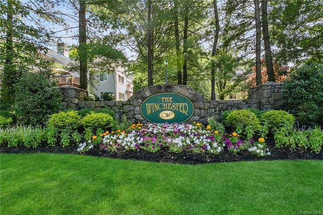 151 Winchester Drive, Yonkers, NY 10710 (MLS #H6049066) :: William Raveis Baer & McIntosh