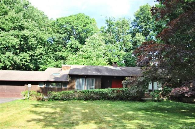 17 Oak Spring Road, Clarkstown, NY 10994 (MLS #H6049136) :: William Raveis Baer & McIntosh