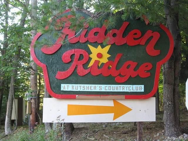 196 Hidden Ridge Drive, Thompson, NY 12701 (MLS #H6049149) :: William Raveis Legends Realty Group