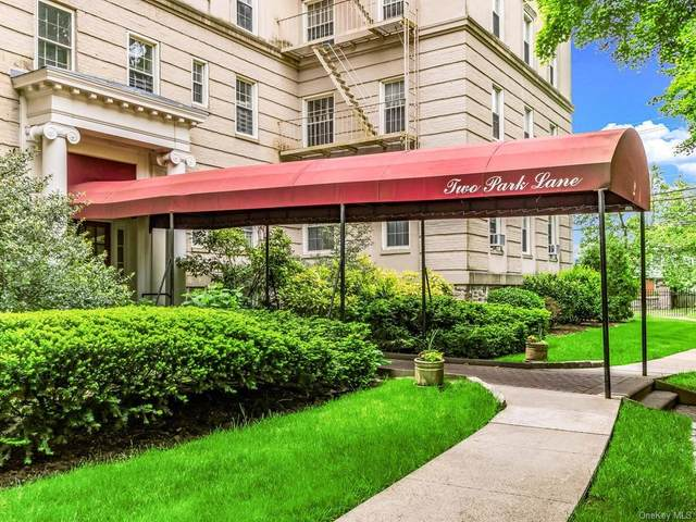 2 Park Lane 5E, Mount Vernon, NY 10552 (MLS #H6049184) :: Mark Seiden Real Estate Team