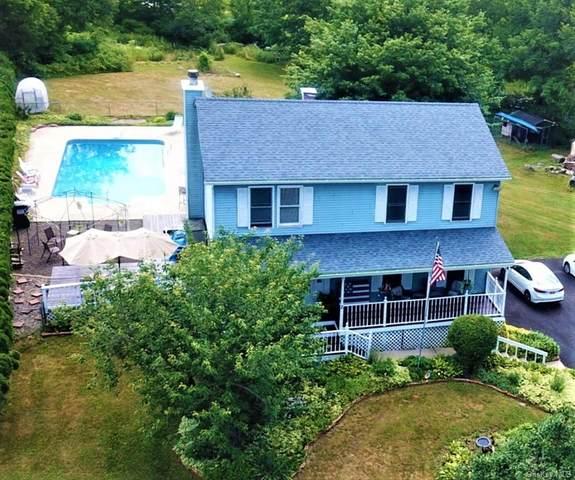 2 Summerset Drive, Plattekill, NY 12589 (MLS #H6049190) :: William Raveis Legends Realty Group