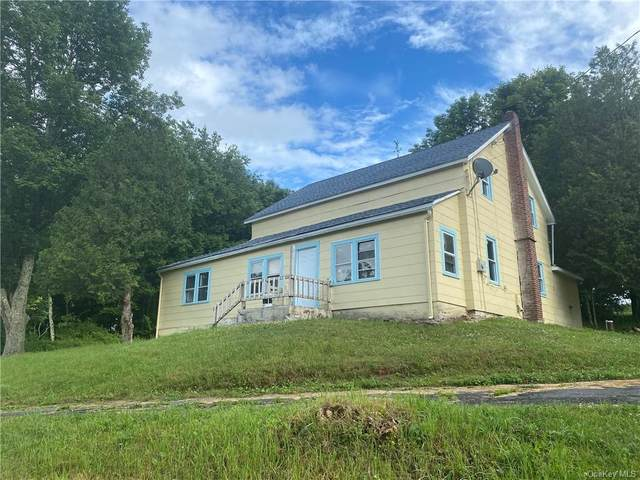 123 Taggart Road Tr 96, Bethel, NY 12720 (MLS #H6049215) :: William Raveis Legends Realty Group