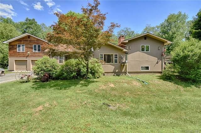 85 Elk Brook Road, Roscoe, NY 12776 (MLS #H6049223) :: Frank Schiavone with William Raveis Real Estate