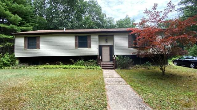 49 Corkscrew Road, Barryville, NY 12719 (MLS #H6049240) :: Frank Schiavone with William Raveis Real Estate