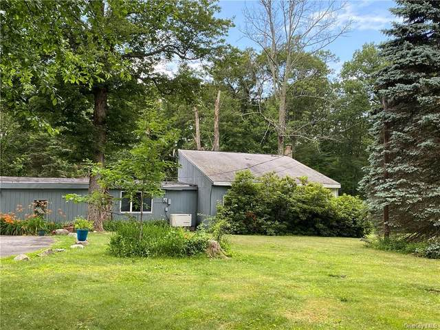 69 Candle Road, Monroe Town, NY 10950 (MLS #H6049285) :: William Raveis Legends Realty Group