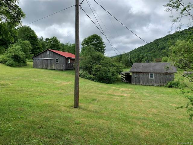 4333 Carcass Brook Road, Call Listing Agent, NY 13756 (MLS #H6049742) :: Frank Schiavone with William Raveis Real Estate
