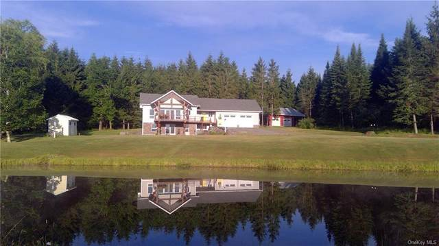 376 Hemmer Road, Callicoon, NY 12758 (MLS #H6050336) :: Mark Boyland Real Estate Team