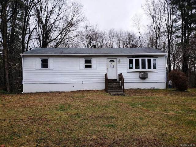 13 Little Sam Road, Rochester, NY 12404 (MLS #H6050404) :: William Raveis Legends Realty Group