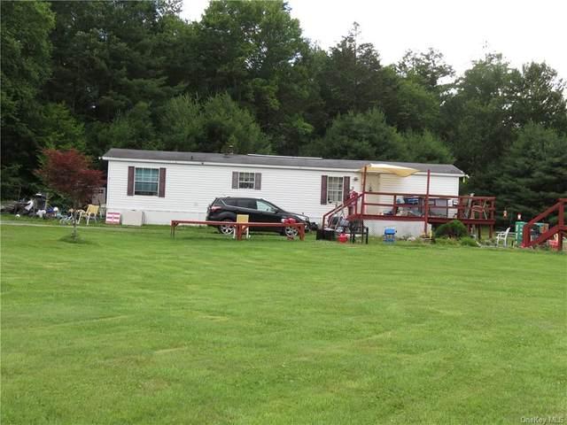 78 Schalck Road, Cochecton, NY 12764 (MLS #H6050416) :: Mark Boyland Real Estate Team