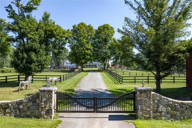 572 E Branch Road, Patterson, NY 12563 (MLS #H6050463) :: Mark Boyland Real Estate Team