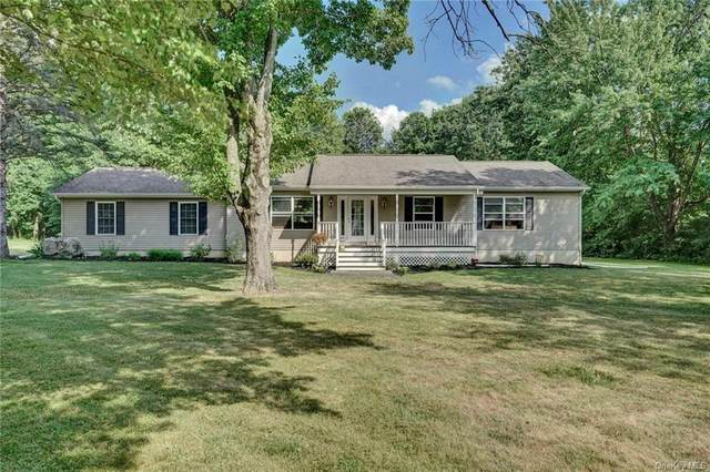 16 Vandewater Drive, Wappinger, NY 12590 (MLS #H6050500) :: The Home Team