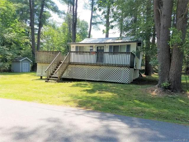 22 E Walnut St Tr 103, Bethel, NY 12778 (MLS #H6050528) :: Mark Boyland Real Estate Team