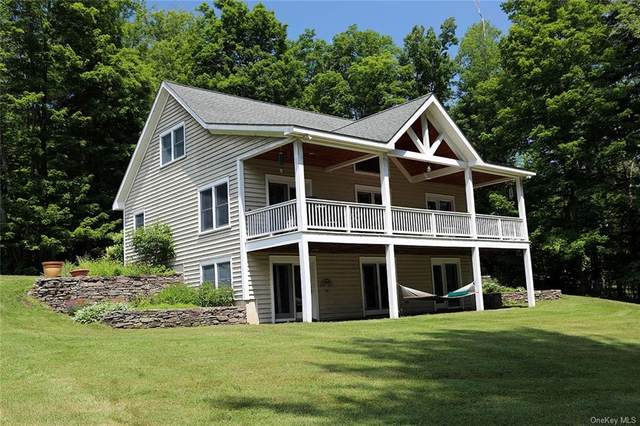 5737 State Route 52, Callicoon, NY 12723 (MLS #H6050538) :: William Raveis Baer & McIntosh