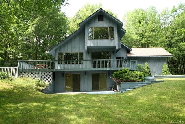 163 Old Danzer Road, Callicoon, NY 12758 (MLS #H6050550) :: Mark Boyland Real Estate Team