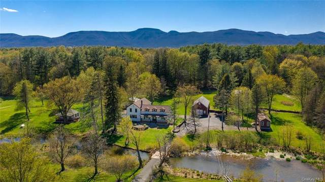 7953 N Route 32, Cairo, NY 12413 (MLS #H6050573) :: Frank Schiavone with William Raveis Real Estate