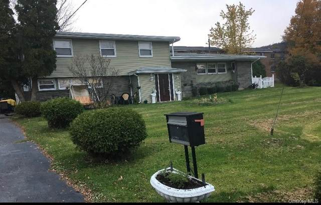 66 Willey Avenue, Liberty Town, NY 12754 (MLS #H6050589) :: Mark Seiden Real Estate Team