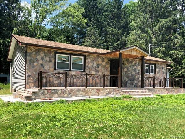 292 State Route 52A, Delaware, NY 12723 (MLS #H6050596) :: William Raveis Baer & McIntosh