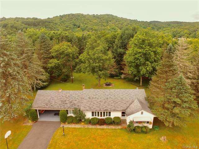3882 State Route 52, Callicoon, NY 12791 (MLS #H6050631) :: William Raveis Baer & McIntosh