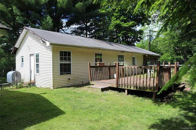 53 Dewitts Flats Road, Callicoon, NY 12748 (MLS #H6050664) :: William Raveis Baer & McIntosh