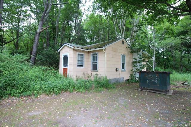 3218 State Route 42, Thompson, NY 12701 (MLS #H6050709) :: William Raveis Baer & McIntosh