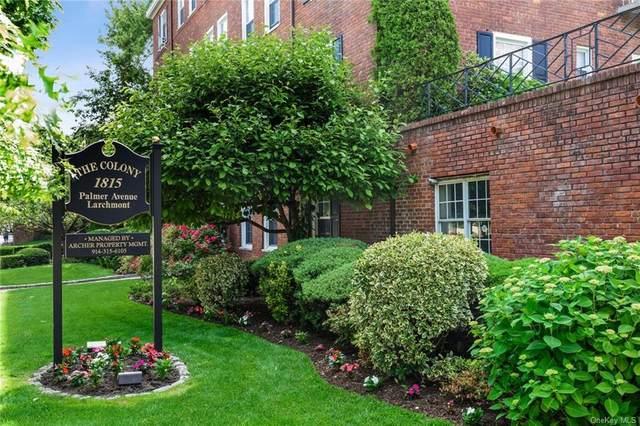 1815 Palmer Avenue 1I, Mamaroneck, NY 10538 (MLS #H6050855) :: Marciano Team at Keller Williams NY Realty