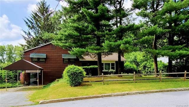 35 Patton Road, Newburgh Town, NY 12550 (MLS #H6050913) :: Mark Seiden Real Estate Team