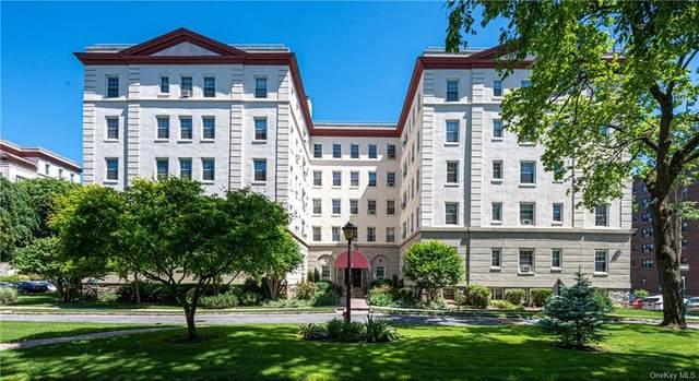 3 Park Lane 4E, Mount Vernon, NY 10552 (MLS #H6050991) :: Mark Seiden Real Estate Team