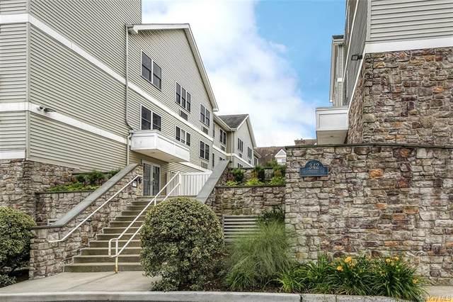 342 Westchester Avenue 26W, Rye Town, NY 10573 (MLS #H6051228) :: William Raveis Baer & McIntosh