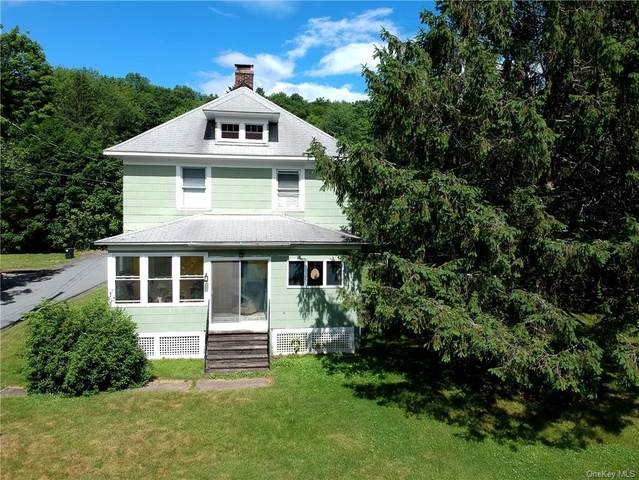 6218 State Route 42, Fallsburg, NY 12788 (MLS #H6051289) :: RE/MAX Edge