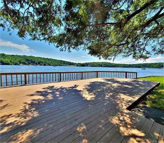 1065 Lake Shore Drive, Bethel, NY 12786 (MLS #H6051386) :: William Raveis Baer & McIntosh