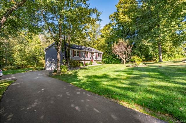 45 Austin Road, Carmel, NY 10541 (MLS #H6051482) :: Kendall Group Real Estate | Keller Williams