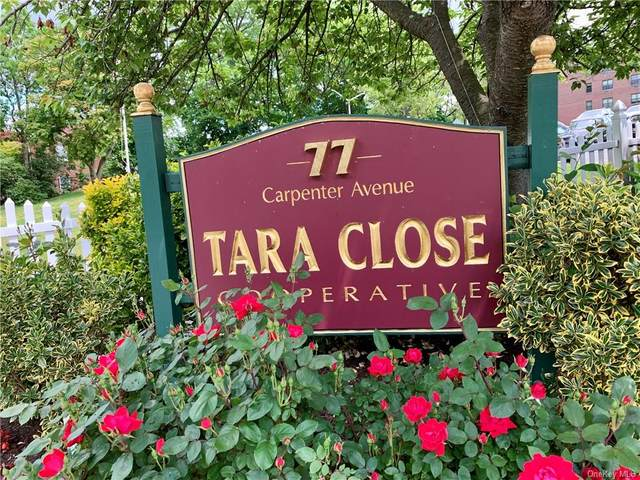 77 Carpenter Avenue 3D, Mount Kisco, NY 10549 (MLS #H6051638) :: Mark Boyland Real Estate Team