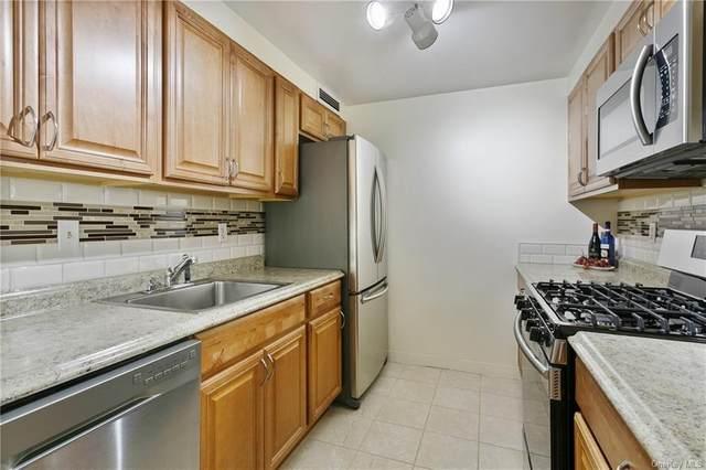 1270 North Avenue 2J, New Rochelle, NY 10804 (MLS #H6051747) :: William Raveis Baer & McIntosh