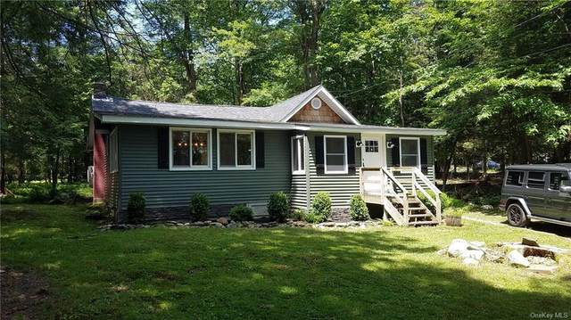 17 1st Road, Thompson, NY 12775 (MLS #H6051763) :: William Raveis Baer & McIntosh