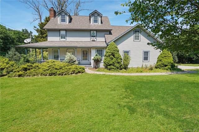 202 Roselawn Road, Woodbury Town, NY 10930 (MLS #H6051804) :: Mark Boyland Real Estate Team