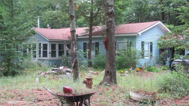 63 Trail One, Mamakating, NY 12790 (MLS #H6051822) :: William Raveis Baer & McIntosh