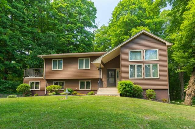 15 Nathan Hale Drive, East Fishkill, NY 12582 (MLS #H6051845) :: William Raveis Baer & McIntosh