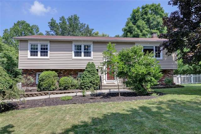 167 Barnes Road, Blooming Grove, NY 10992 (MLS #H6051854) :: William Raveis Legends Realty Group