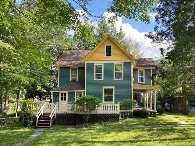 42 Academy Street, Pine Hill, NY 12465 (MLS #H6051921) :: Frank Schiavone with William Raveis Real Estate