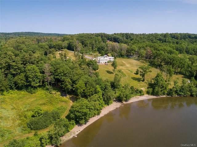 216 County Route 385, Catskill, NY 12414 (MLS #H6051932) :: Nicole Burke, MBA | Charles Rutenberg Realty