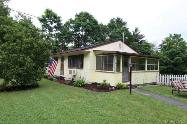 54 Cold Spring Road, Liberty Town, NY 12754 (MLS #H6051990) :: William Raveis Baer & McIntosh