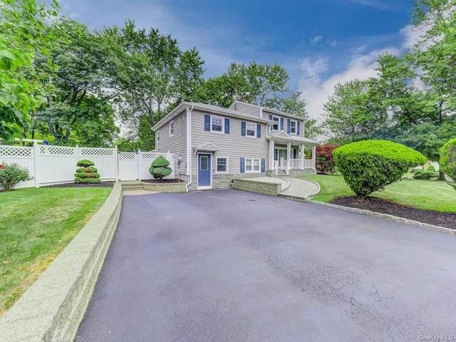 20 Birch Drive, Clarkstown, NY 10954 (MLS #H6052068) :: William Raveis Baer & McIntosh