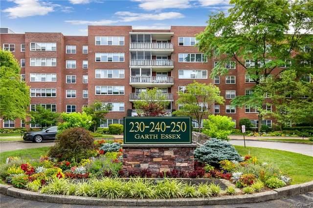 240 Garth Road 4H2, Eastchester, NY 10583 (MLS #H6052214) :: Kendall Group Real Estate | Keller Williams