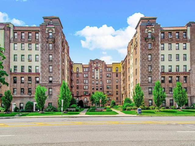 37 N Central Avenue 3E, Greenburgh, NY 10530 (MLS #H6052221) :: William Raveis Baer & McIntosh