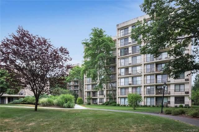 150 Overlook Avenue 5R, Peekskill, NY 10566 (MLS #H6052342) :: Cronin & Company Real Estate