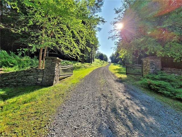 ** Jaketown Road, Bethel, NY 12720 (MLS #H6052360) :: RE/MAX RoNIN