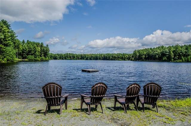 Summit Drive, Highland, NY 12792 (MLS #H6052400) :: The Home Team