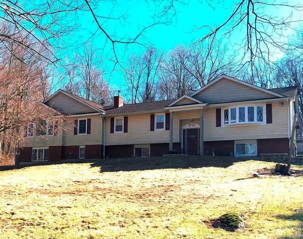 41 Tulip Road, Southeast, NY 10509 (MLS #H6052446) :: Kendall Group Real Estate | Keller Williams